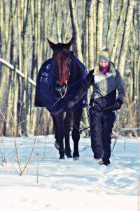 Hevonen ja hoitaja talvimaisemassa
