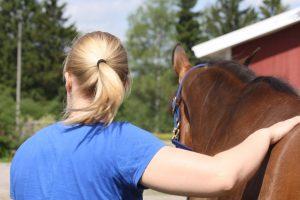 Ihminen hevonen takaapäin