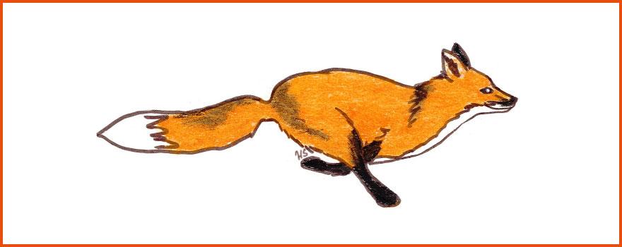 KETTU-hankkeen logo.