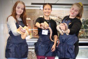 kolme eläintenhoito-opiskelijaa pitelee käärmeitä käsissään