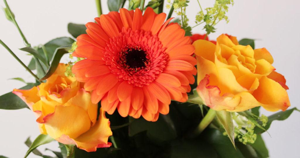Kolme oranssia kukkaa kimpussa.